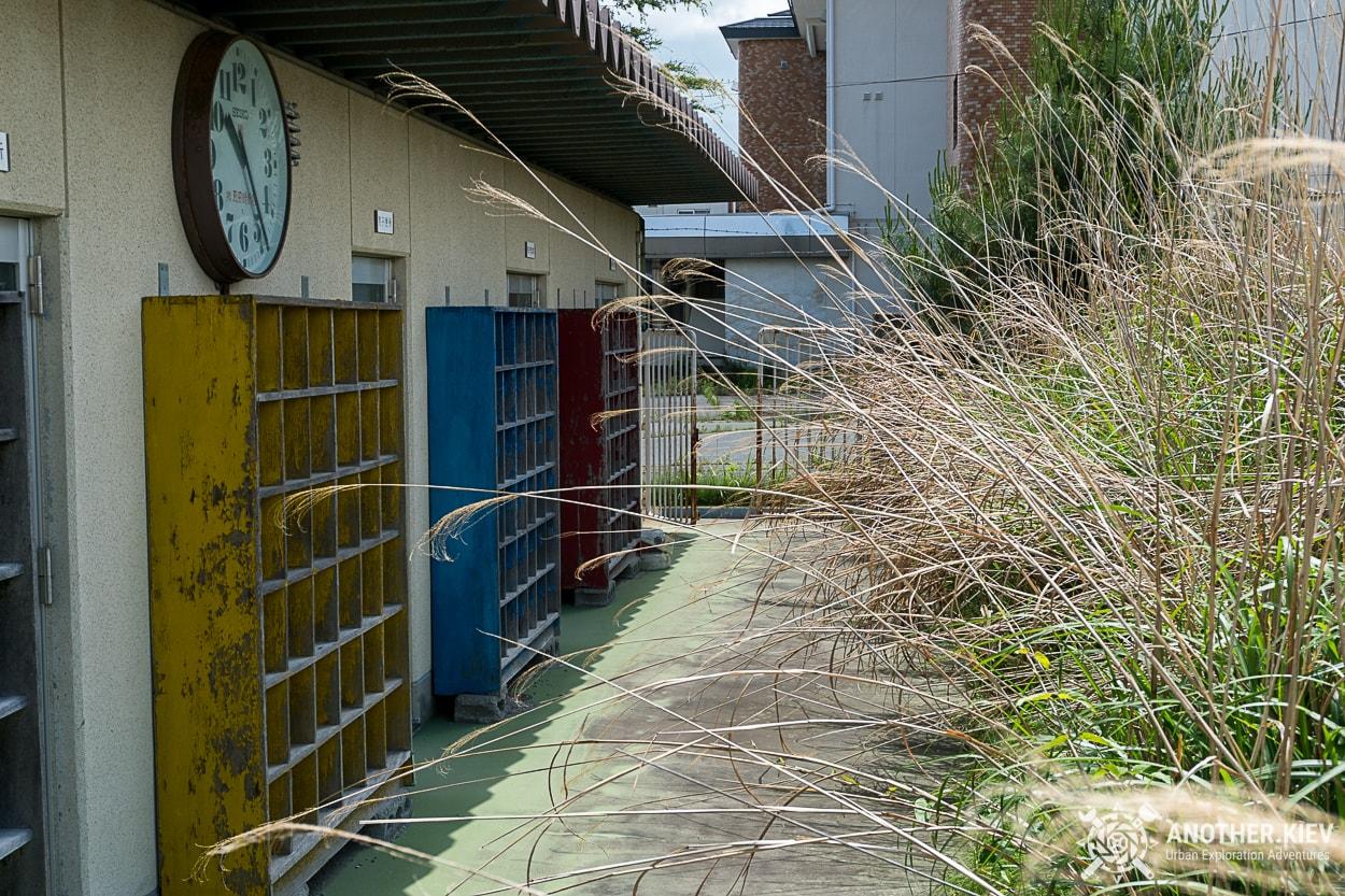 exploring-fukushima-green-namie3 THE THIRD DAY IN THE EXCLUSION ZONE OF FUKUSHIMA